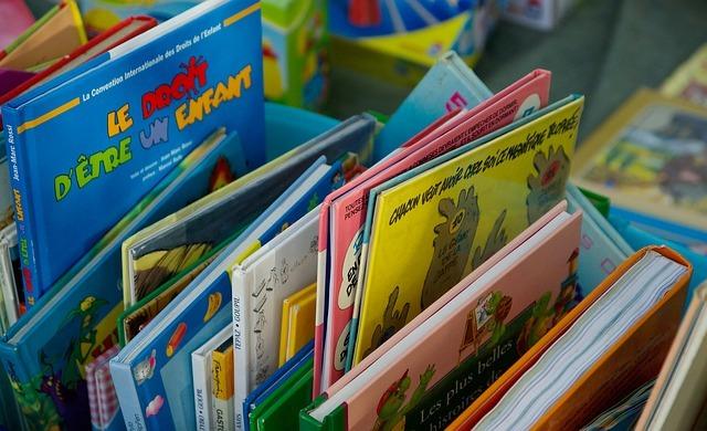 Livres et bds à vendre, peut-être trouvés grâce à Sabradou