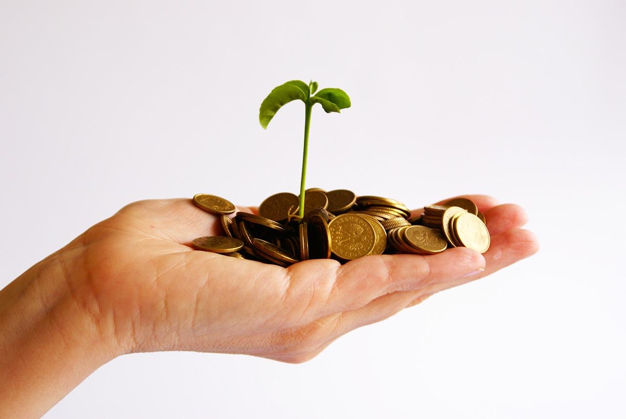 Nos conseils pour un investissement rentable